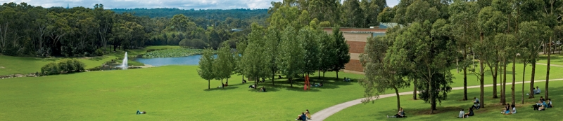 Studiare in Australia nella meravigliosa Sydney presso un'università unica come la Macquarie
