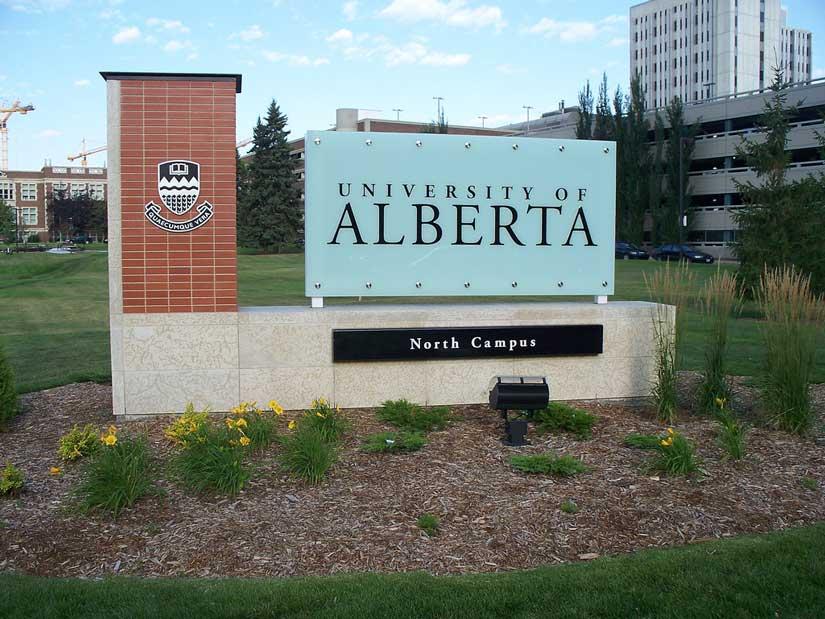 studiare in Canada esperienze master