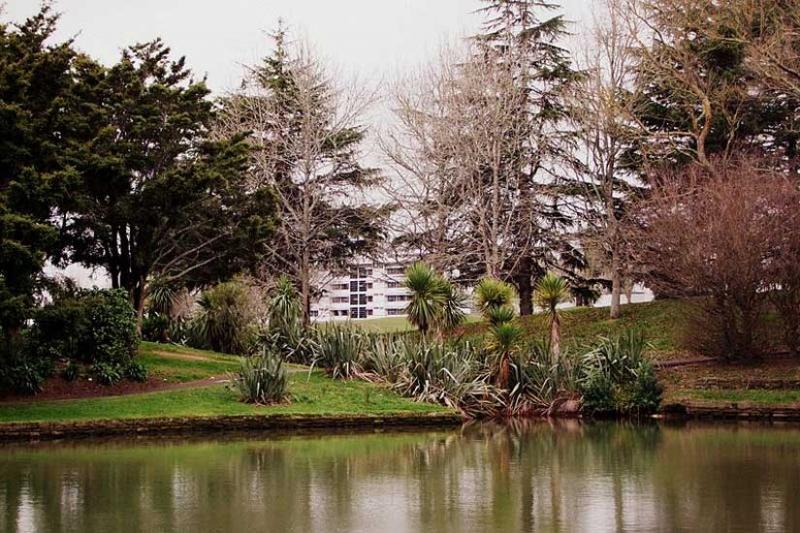 università in Nuova Zelanda: university of Auckland