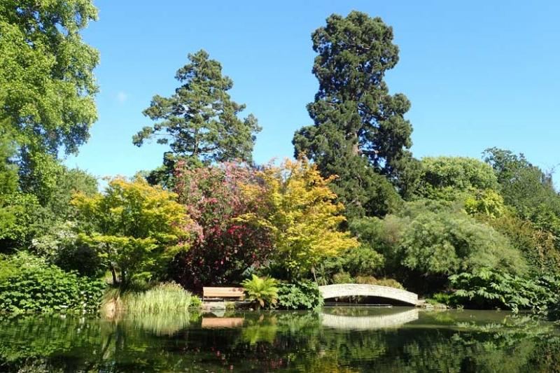 università a Christchurch: università di canterbury