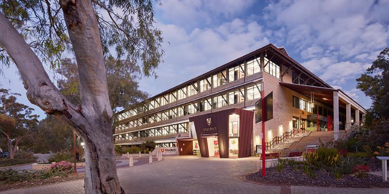 università in australia murdoch university