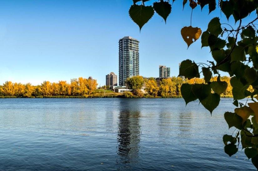 consigli per vivere a Montreal per studio