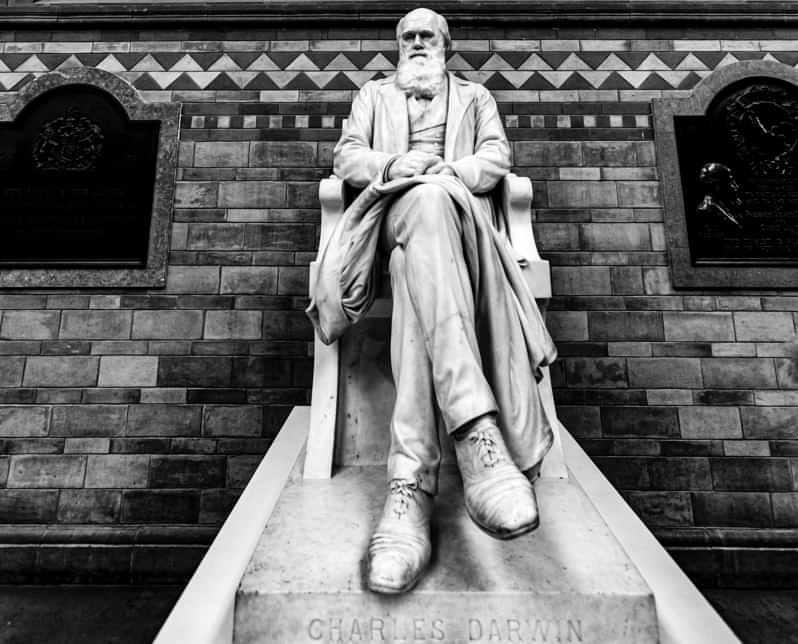 La Charles Darwin University gode di grande considerazione
